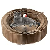 Kratzbaum Pappe Liege mit Ball Spielzeug Kitty Pet Nest Bett Premium faltbar recycelter Wellpappe Kratzen DIY montiert Kätzchen House Schützen Ihre Möbel