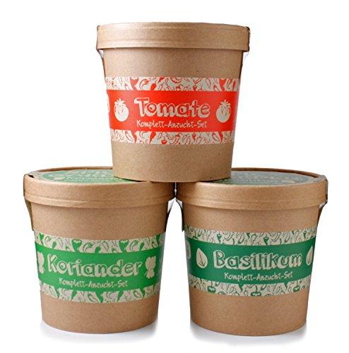 Spicy Garden - Anzucht-Set - Kräuter - mit Koriander, Basilikum & Tomate - Pflanzen-Kit - Einstieg in die Planzen-Zucht - ideal zum Verschenken