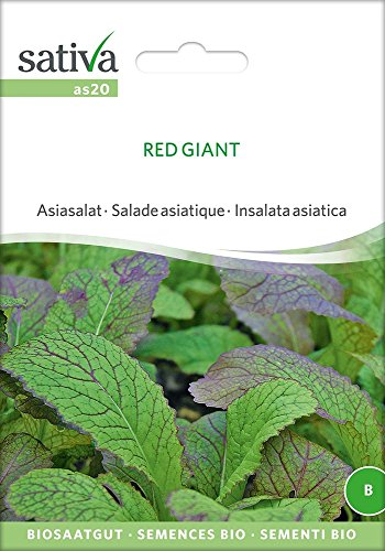 Asiasalat Red Giant | Bio-Salatsamen
