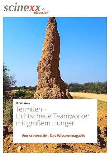 termiten-lichtscheue-teamworker-mit-grossem-hunger