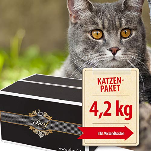 Frostfutter Perleberg Katzen-Barf Komplett-Paket 4,2kg incl. Fix-Barf Komplett-Menüs Huhn/Rind, Geflügel, Rind/Pferd, Pute/Alaska-Seelachs und vieles mehr