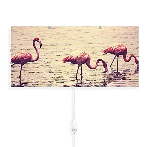 banjado - Wandlampe 56cmx26cm Design Wandleuchte Lampe LED mit Wechselscheibe und Motiv Drei Flamingos, Wandlampe mit 2x 6W LED Leuchtmittel