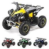 Actionbikes Motors Mini Kinder Elektro Quad ATV RENEBLADE 1000 Watt Pocket Quad - Original Saefty Touch Fußschalter - 36 Volt - Kinder Pocketquad (Schwarz/Gelb)