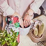 Undergreen, 2,5 Cactus Love, Terriccio BIO Ideale per tutte le Cactacee e altre Piante Grasse da appartamento o balcone, 2,5 Litri,