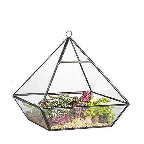 NCYP Pot jardinière de table articulée en métal et verre Forme terrarium géométrique Serre en verre Fougère Mousse 15cm
