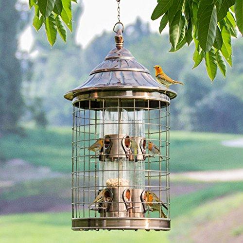 Wild Bird Feeder Schmiedeeisen Vogelkäfig Taubengrau Parrot Pet Bird Futterautomaten lockt Vögel und Outdoor Bird Watching. cacoffay (Schmiedeeisen Outdoor)