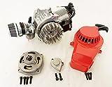 Completo motor de 2 tiempos 49 cc cilindro único para Minimoto/Mini Quad