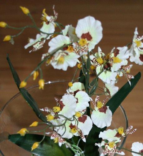 Kunstblume Agapanthus Schmucklilie, 38 cm, weiß