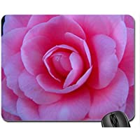 A Camellia up Close on the Rose Mouse Pad, Mousepad (Flowers Mouse Pad)