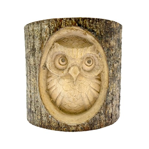 timber-treasures-hand-carved-owl-in-log-small
