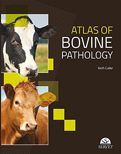 Atlas of bovine pathology - Veterinary books - Editorial Servet por Keith Cutler