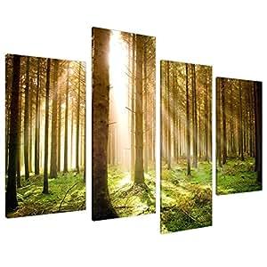 Tableau sur Toile - Forêt de Grands Arbres et Lumière - 4 Parties - Wallfillers Canvas 4042