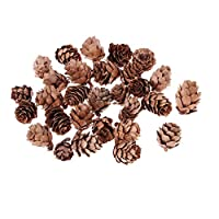 Ogquaton 30 Pieces Small Natural Dried Pine Cones for Xmas Tree Decoration Vase Bowl Filler Displays Crafts or Crafting Christmas Ornament Decor Durable and Useful