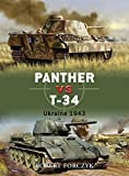 Panther vs T-34: Ukraine 1943 (Duel)