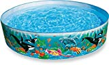 Snap-Set-Pool Ocean Reef