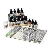 designers den transparent photo colour set 12 shades+sketch book a4 size kit