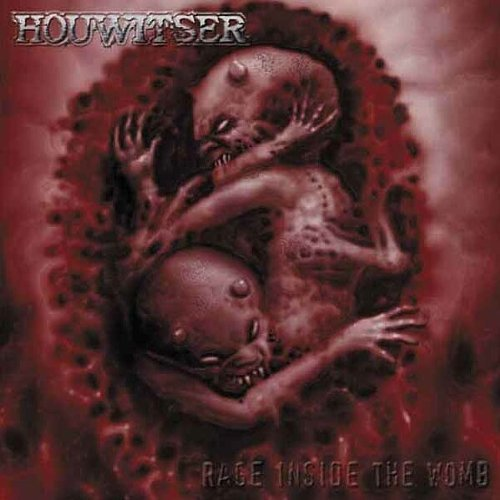 Rage Inside The Womb by Houwitser