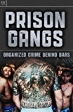Prison Gangs: Organized Crime Behind Bars (English Edition)