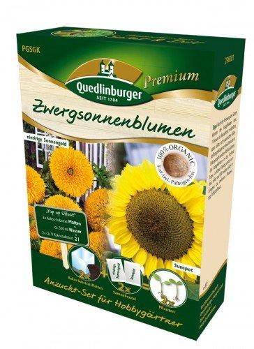 Anzucht-Set Zwergsonnenblumen Sunspot & Sonnengold