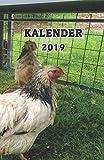 Kalender 2019: Hühner/Eier Kalender/Landwirt/Hobbyzüchter/Legeaufzeichnung/Eier Legeleistung -