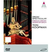 Organ Spectacular [DVD-AUDIO]
