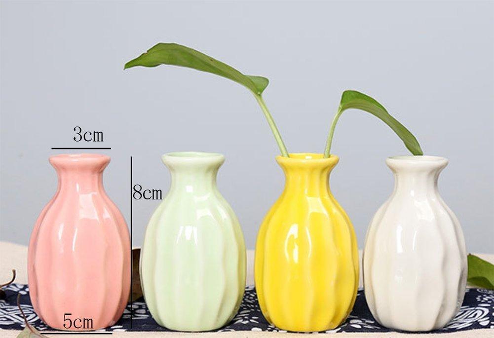 ChakilFlorero de Ceramica Jardinero Flor Planta Pot Flor Patrón Oficina Hogar Jardín Balcón Decoración Flor Delicada…