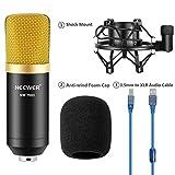 YDL.QING Kit Microfono a condensatore con Microfono in Metallo Shock Mount, Cavo Audio USB per Studio Professionale di Trasmissione e Registrazione (Nero),Gold