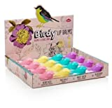 Birdy Lippenbalsam 4pc Set - Beere Küss - Ananas - Minty Fresh - Blueberry - Kleinserien - Geschenk Set