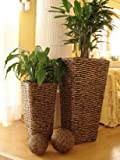 Casa Mina 2er Set Wasserhyazinthe Blumenkübel Übertöpfe Pflanzkübel Blumentopf Phuket braun 87/62cm hoch