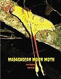 """Madagascan Moon Moth Sketchbook for Kids: Blank Paper for Drawing, Doodling or Sketching 100 Large Blank Pages (8.5""""x11"""") for Sketching, inspiring, ... imagination.(SketchBook for Kids): Volume 98"""