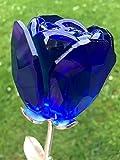 Specifiche-rosa make K9cristallo-argento stelo con foglie 2-x vaso in cristallo Swarovski Elements (con tag) Descrizione se amate un fiore, non Pick it up. Perché se ti Pick Up muore e cessa di essere ciò che amate. quindi, se ti piace...