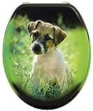WC-Sitz Dekor Hund | Toilettensitz | WC-Brille aus Holz | Metall-Scharnier