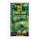 Compo Sana–®, plantas verdes de y palmera Tierra