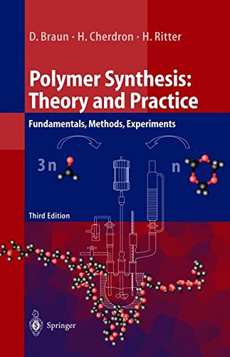 Polymer Synthesis: Theory and Practice - Fundamentals, Methods, Experiments