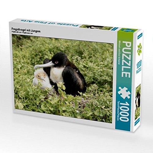 Fregattvogel mit Jungem 1000 Teile Puzzle Quer
