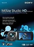 Sony Movie Studio HD 10 Platinum (PC)