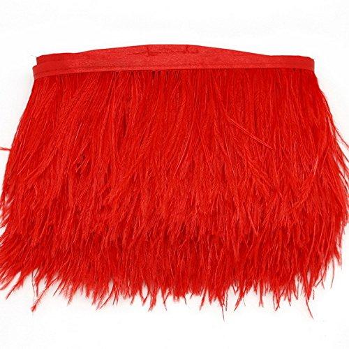 Fransen Band Federn Feder Band für Kleidung Hochzeitskleid DIY Nähen Handwerk Kostüme Dekoration (Rot) ()