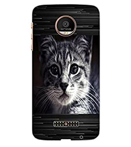 ColourCraft Cat Look Design Back Case Cover for MOTOROLA MOTO Z PLAY