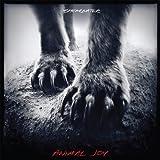 Songtexte von Shearwater - Animal Joy