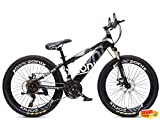 Mountainbike 24 Zoll Zonix New Fashion grau (Misc.)