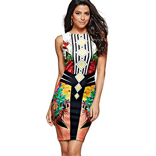FNKDOR Summer Women Ladies Bussiness Meeting Banquet Elegant Wear Colorful Sleeveless Round Neck Printing Sheath Office Lady Formal Multicolor Dress