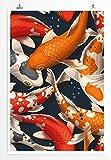 Eau Zone Home Bild - Bild – Bunter Koi Karpfen Schwarm- Poster Fotodruck in höchster Qualität