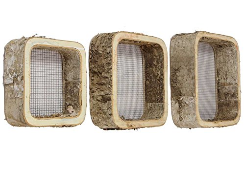 Birke (SIDCO ® 3er Set Wandregal Wanddeko Birke Rahmen Birkenholz Birkenrinde Hängeregal Deko)
