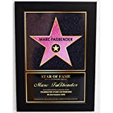 WALK OF FAME STERN Bild (25x35cm)