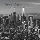 New York - Broschurkalender - Kalender 2019 - teNeues-Verlag - Art & Image - Wandkalender mit Poster und Platz für Eintragungen - 30 cm x 30 cm (offen 30 cm x 60 cm)