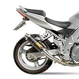 Auspuff Mivv GP Suzuki SV 650/ S 2003 Carbon