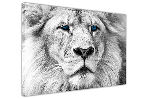 CANVAS WALL ART PRINTS: BLUE EYES WHITE LION IMMAGINI ROOM