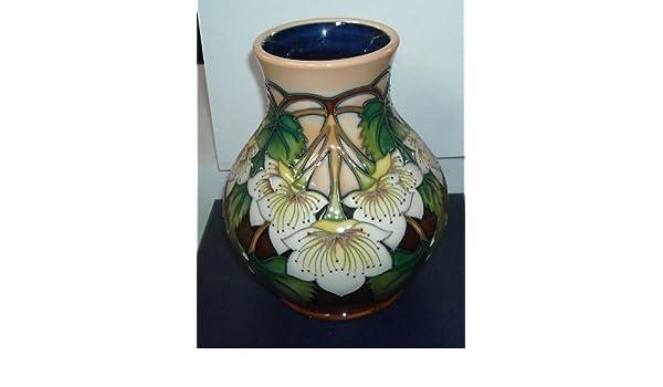 Moorcroft Pottery - NZ Collection - Ribbonwood Vase 869/6: Amazon co
