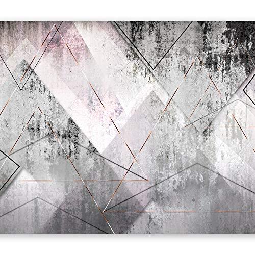 murando Carta da parati Calcestruzzo 400x280 cm Fotomurali in TNT Murale alla moda Decorazione da Muro XXL Poster Gigante Design Carta per pareti Astratto geometrico grigio a-A-0350-a-a
