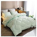 LCAIHUA-Bettdecken Decke Bettdecke Tagesdecke Bettzeug Bettwäsche Mikrofaser Warmer Winter Ballaststoff Decke Single Doppelt Plus Dick Schlafzimmer Schlafsaal,Grün,4 Größen